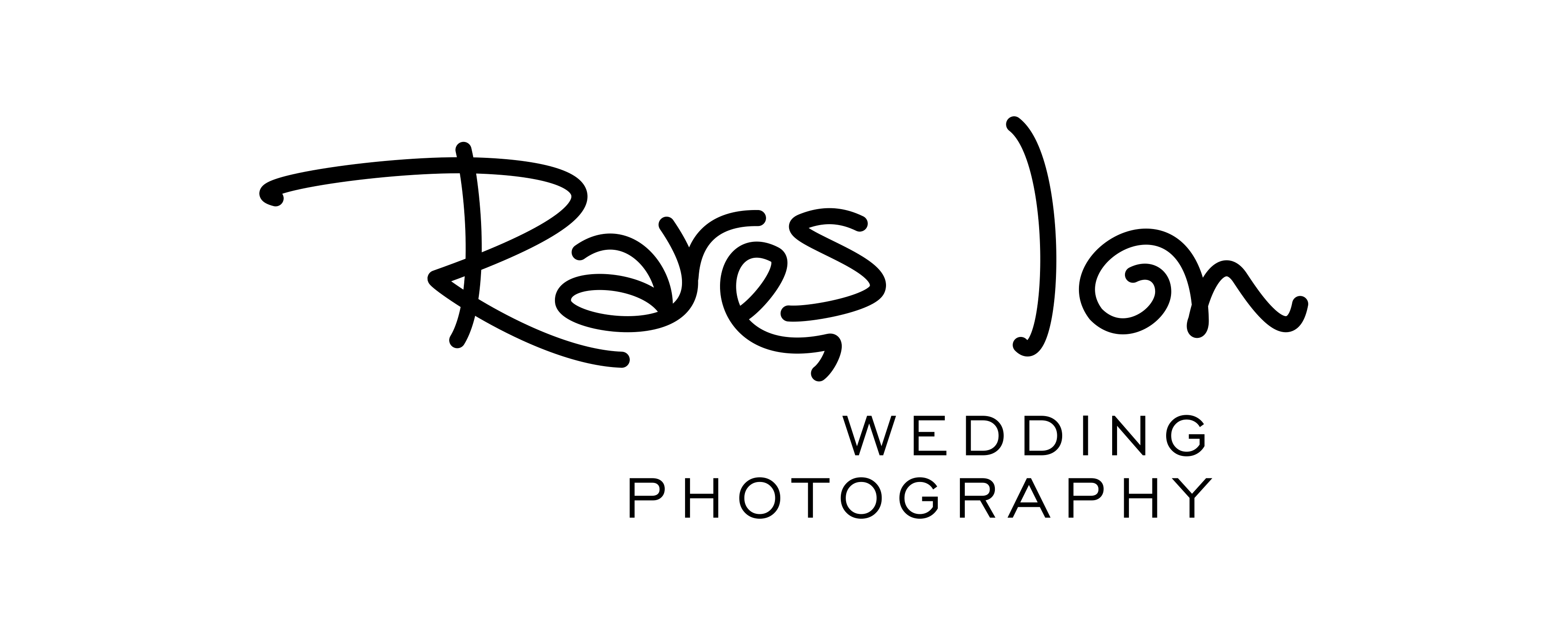 Logo Wedding storyteller